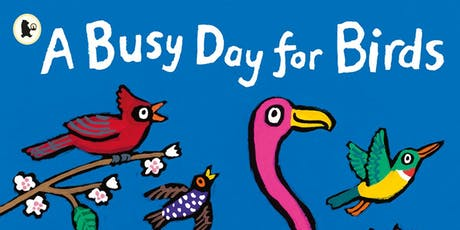 busy-day-for-birds